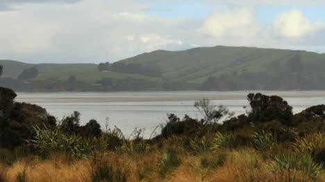 New-Zealand-Waikawa-Bay-Pan