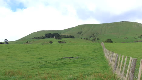 New-Zealand-Fence-And-Green-Meadow