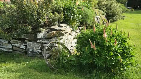 New-Zealand-Garden-With-Rock-Wall