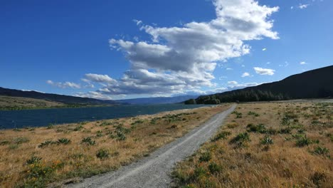 New-Zealand-Runner-By-Lake-Dunstan