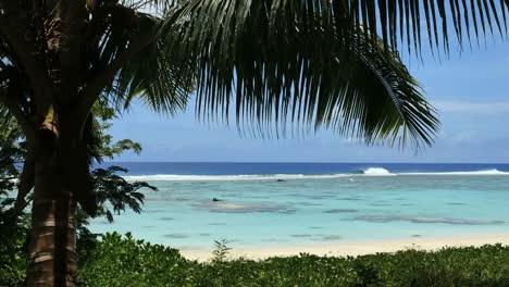 Rarotonga-Lagoon-And-Reef
