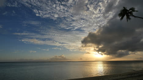 Rarotonga-Sunset-And-Clouds-With-One-Palm-Tree