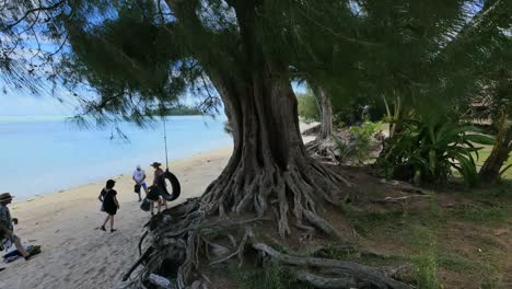 Rarotongo-Trees-With-Tourists-At-Muri-Beach