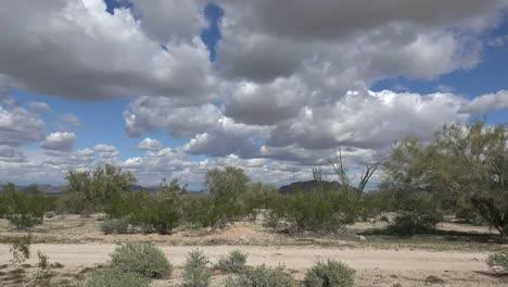 Arizona-Clouds-Over-Desert-Shrubs