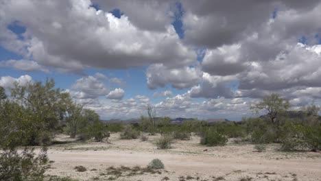Arizona-Desert-View-Pan