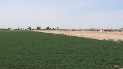 Arizona-Irrigated-Field-Pan