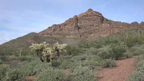 Arizona-Mountain-Landscape