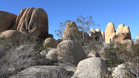 Rocas-Y-Arbustos-De-Joshua-California