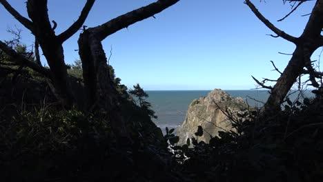 California-Boda-Rock-Patricks-Point-Con-Troncos-De-árboles
