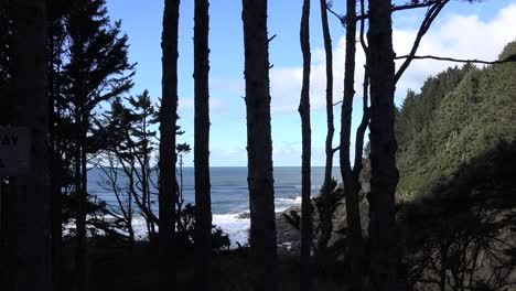 Oregon-Coast-At-Cape-Perpetua-Through-Trees
