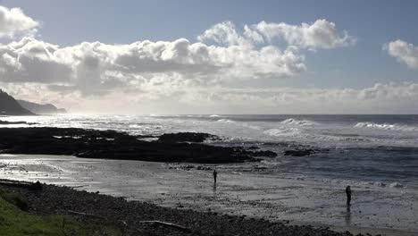Oregon-Coast-Near-Cape-Perpetua-Sound