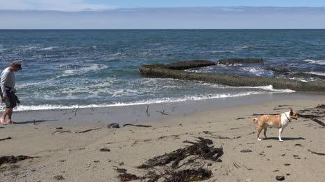 California-Santa-Cruz-Man-On-Beach-With-Dog-Pan