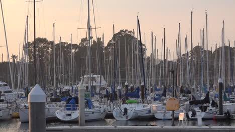 California-Santa-Cruz-Sailboats-Docked