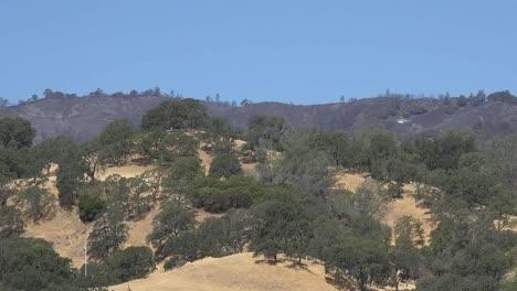 California-Burned-Area-Beyond-Oak-Savanna