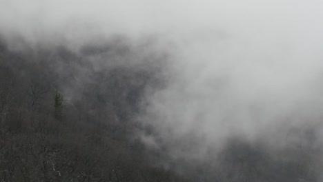 Nature-Fog-Moving-Slowly-Up-Slope-Pan