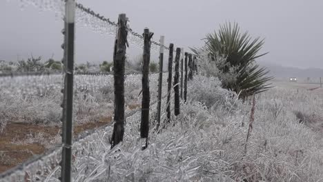 Texas-Icy-Fence-With-Car-In-Background