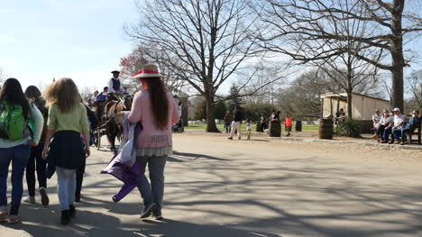 Virginia-Colonial-Williamsburg-Horse-And-Buggy