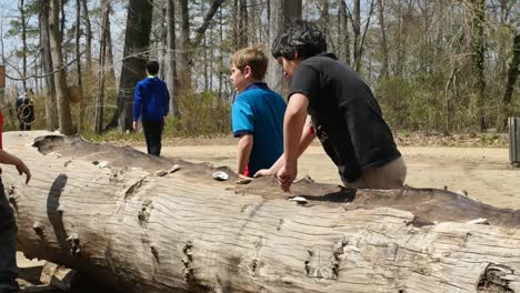 Virginia-Jamestown-Children-Scraping-On-Log