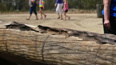 Virginia-Jamestown-People-Walk-Past-Log