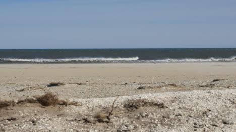 Virginia-Waves-On-Sandy-Shore