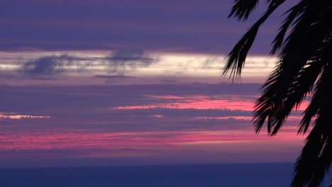 Chile-Sunset-With-Palm-Pan