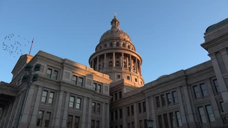 Texas-Austin-Capitol-View-Of-Dome-With-Birds