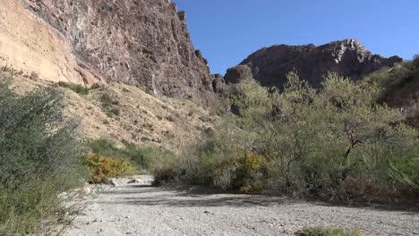 Texas-Big-Bend-Burro-Mesa-Trail