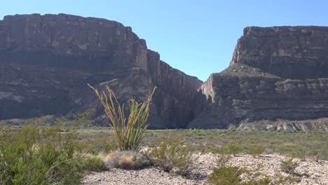 Texas-Big-Bend-Santa-Elena-Canyon-With-Ocotillo