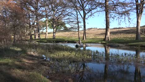 Texas-Hill-Country-Stream-View