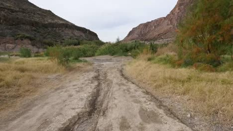 Texas-River-Road-Moving-Down-Pitted-Dirt-Road