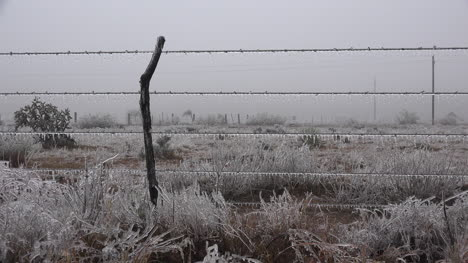Texas-Landscape-With-Ice-On-Fence