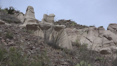 Texas-Rock-Formation-With-Ocotillo