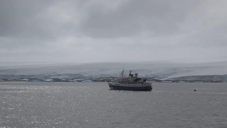 Antarctica-Palmer-Archipelago-Zooms-On-Expedition-Ship