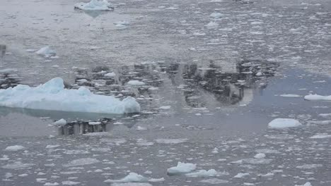 Antarctica-Floating-Ice-With-Reflections