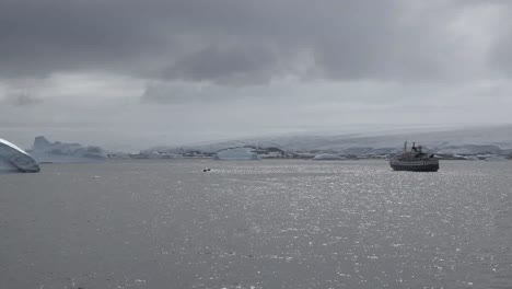 Antarctica-Inflatable-Boats-From-Palmer-Station-And-Expedition-Ship