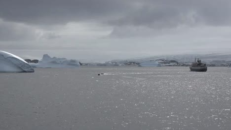 Antarctica-Zooms-Out-From-Inflatable-Boats-From-Palmer-Station