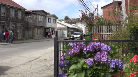 Chile-Chiloe-Chonchi-Flowers-And-Street