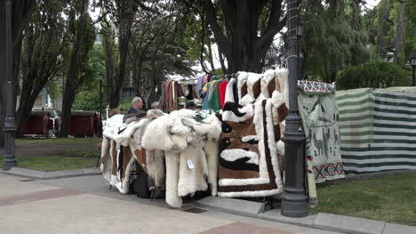 Chile-Punta-Arenas-Wool-Sales-In-Plaza
