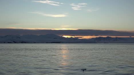 Antártida-Sol-De-La-Mañana-En-El-Agua-Antártida-Sol-De-La-Mañana-Sobre-El-Agua