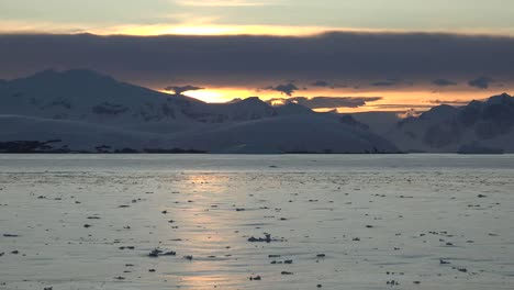Antarctica-Zoom-In-Along-Sunlight-On-Water