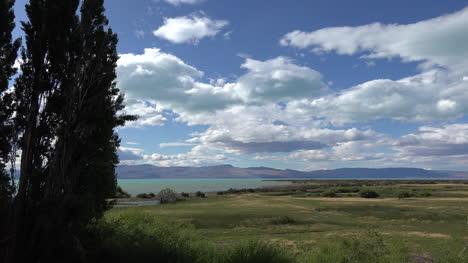 Argentina-Patagonia-Poplar-Trees-And-Lake-Argentino