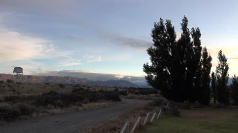 Argentina-Patagonia-Trees-In-Evening