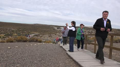 Argentina-Punta-Tombo-Boardwalk-And-Tourists