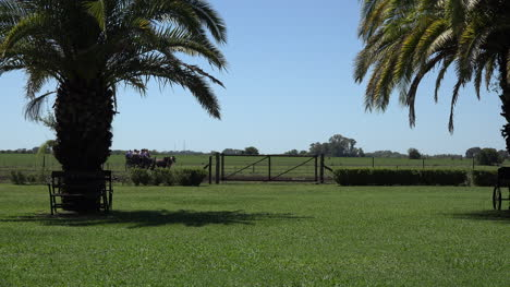 Argentina-Estancia-Buggy-Goes-By
