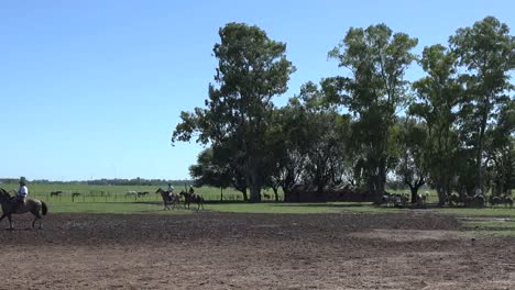 Argentina-Estancia-Landscape-With-Trees