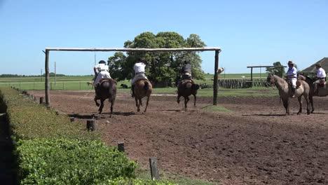 Argentina-Estancia-Tres-Gauchos-Consigue-Anillos