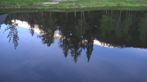 Alaska-Alyeska-Reflection-Of-Trees-And-Mountain