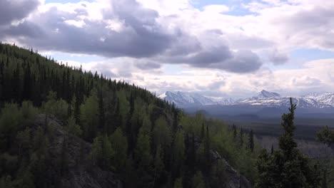 Alaska-Denali-Valley-View-Zoom-In