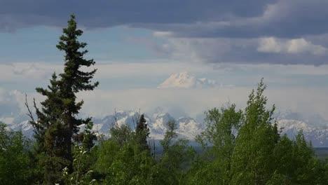 Alaska-Mount-Denali-Framed-By-Trees