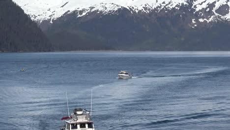 Alaska-Whittier-Boats-Arriving-In-A-Row-Tilt-Down